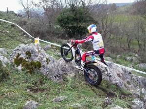 trial oliveto citra 2013